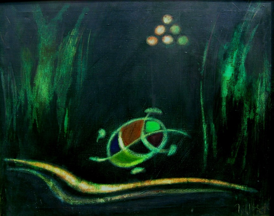 Way of turtle 3 2005 oil canvas 73x92
